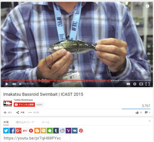 TWH ICAST2015 BassRoid