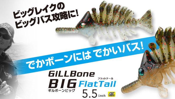 Gill-Bornサイズ変更